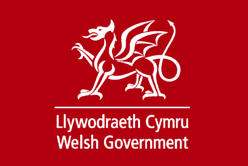 Image result for welsh government