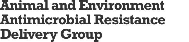 Animal and Environment Antimicrobial Resistance Delivery Group