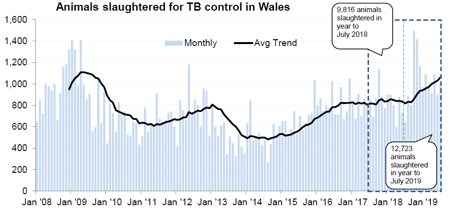 Chart showing the trend in animals slaughtered for TB control in Wales since 2008. 12,723 animals were slaughtered in the 12 months to July 2019, an increase of 30% compared with the previous 12 months.