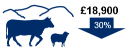 Cattle and sheep (Less Favoured Area) farms: £18,900. Down 30%