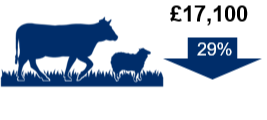 Cattle and sheep (lowland) farms: £17,100. Down 29%