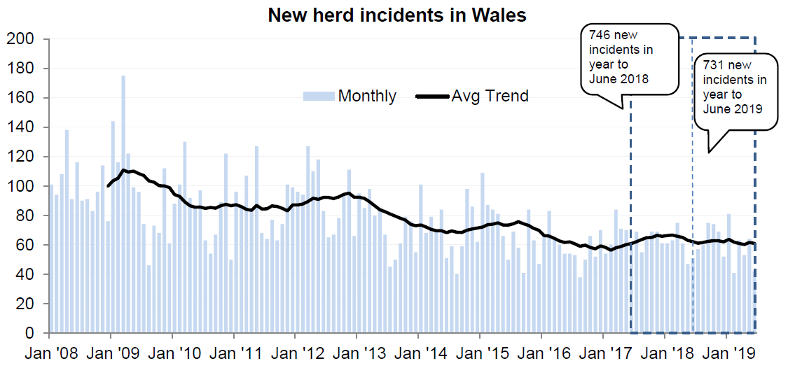 Chart showing the trend in new herd incidents in Wales since 2008. There were 731 new incidents in the 12 months to June 2019, a decrease of 2% compared with the previous 12 months.