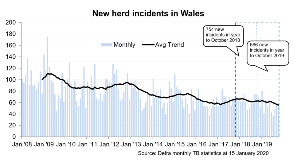 Chart showing the trend in new herd incidents in Wales since 2008. There were 666 new incidents in the 12 months to October 2019, a decrease of 12% compared with the previous 12 months.